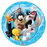 Looney Tunes Licensed Inflatable Ball 9 inches