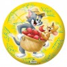 Tom & Jerry Licensed Inflatable Ball 9 inches